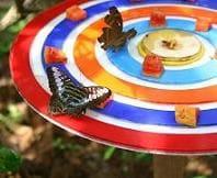 www.jspuzzles.com - Great Jigsaw puzzles online